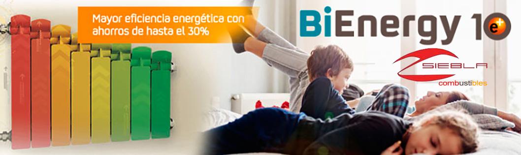 repsol_bienergy_combustibles_siebla_malaga
