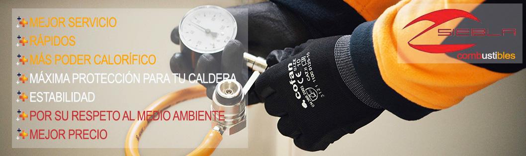 servicios_repsol_combustibles_siebla_malaga